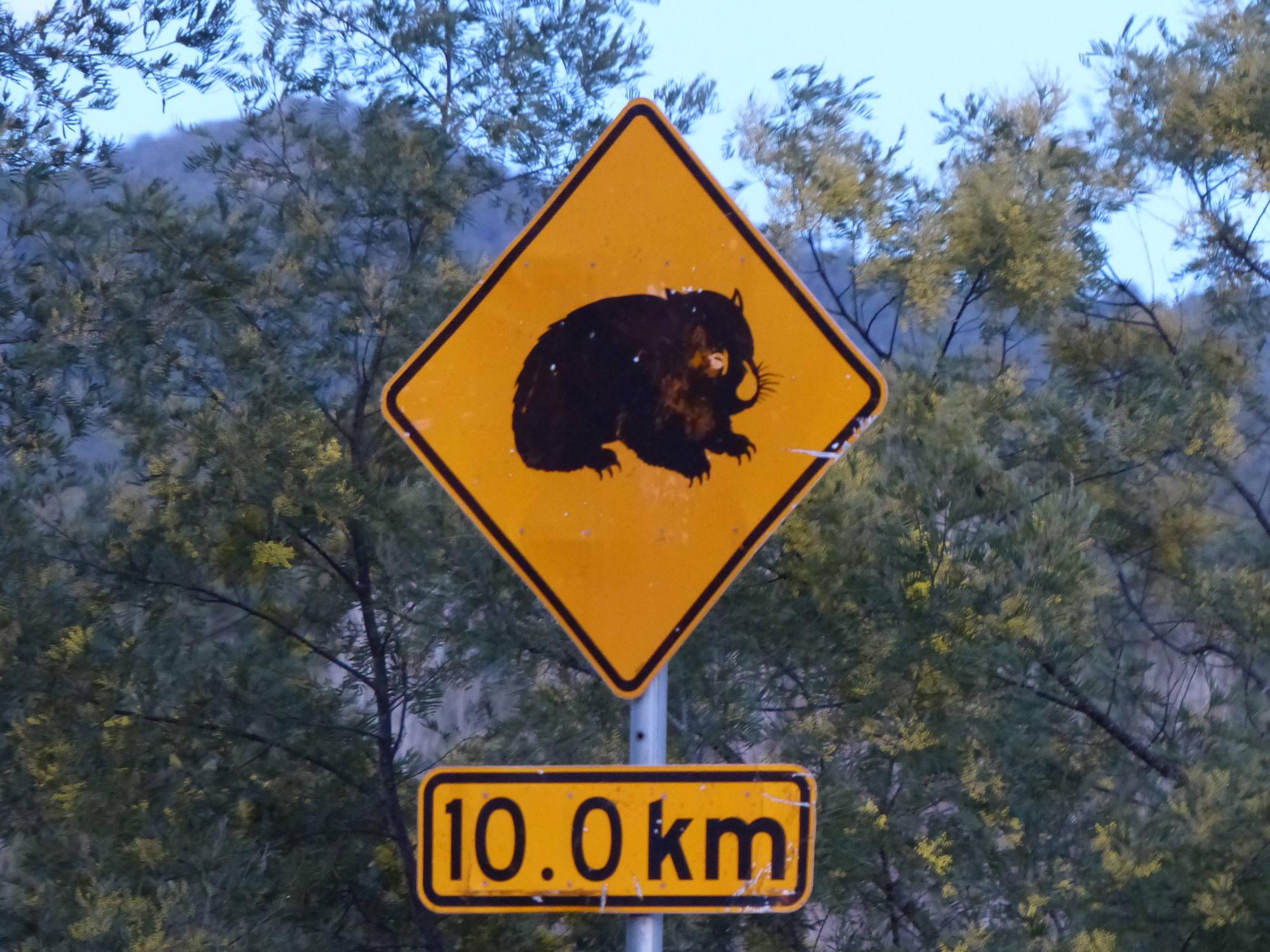 Wombats Verkehrsschild