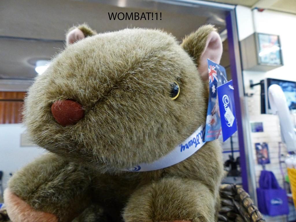 Wombat-Kuscheltier mit Cadbury-Schleife