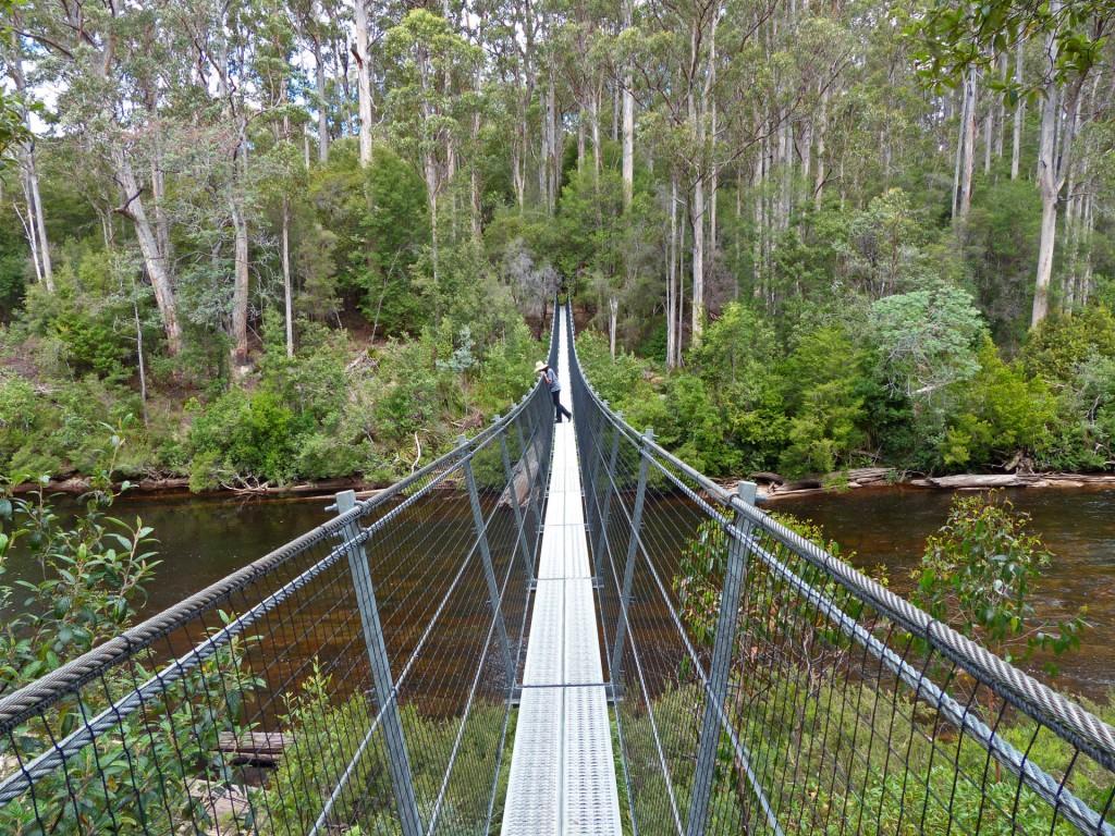 Alina auf Hängebrücke beim Tahune AirWalk, Tasmanien
