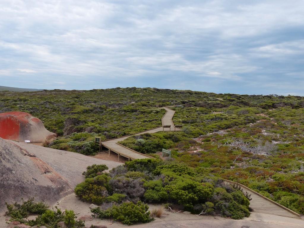 Typischer australischer barrierefreier Boardwalk auf dem Weg zu den Remarkable Rocks