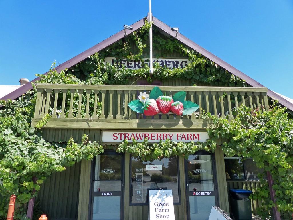 Erdbeerfarm Beerenberg in Hahndorf